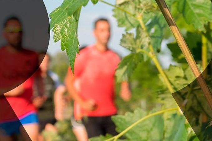 Viajamos a la Ribera del Duero con la Ribera Run Race