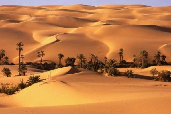 Desierto del Sáhara, el más grande del mundo