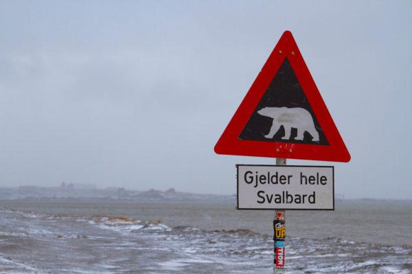 Señal en Svalbard que avisa de la presencia de osos polares
