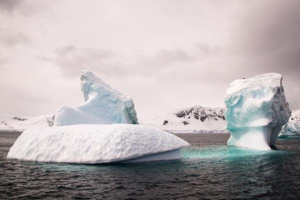 Icerbergs en la Antártida
