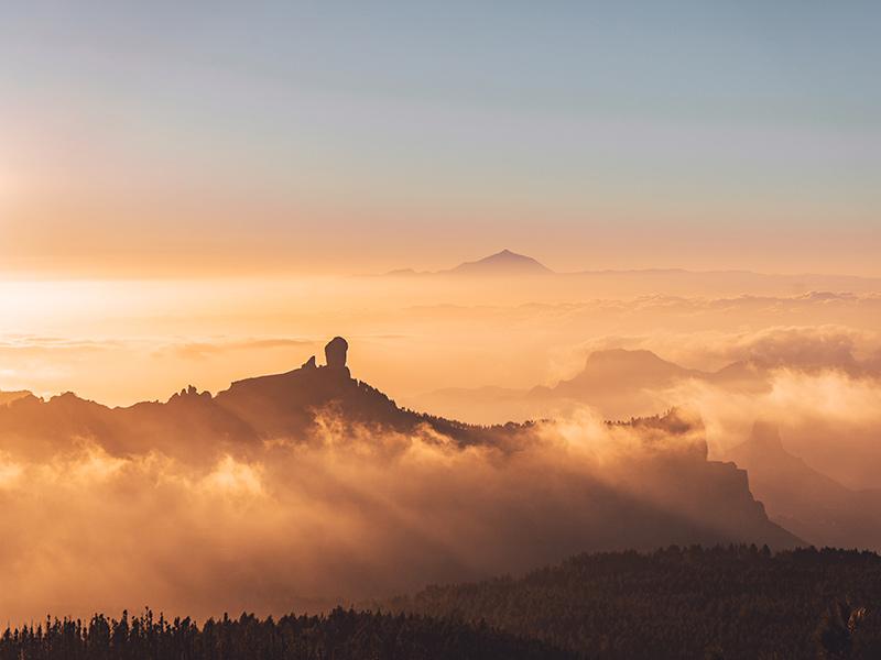 Especial Gran Canaria, gran destino «seguro» y «sostenible» con Logitravel